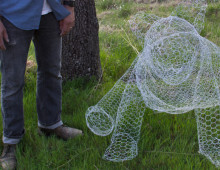Wildlife Wire Sculptures